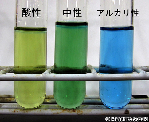 BTB溶液 - JapaneseClass.jp